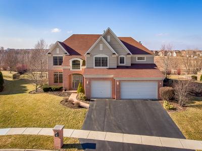 Geneva Single Family Home Price Change: 0n358 Feece Court