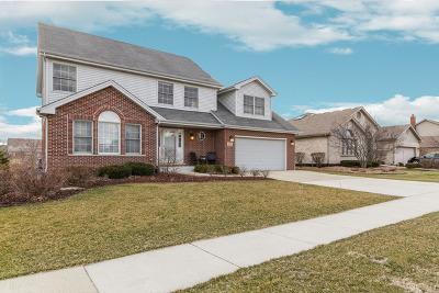 Homer Glen Single Family Home For Sale: 14960 South Carlton Lane