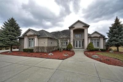 Mokena Single Family Home For Sale: 18124 South Hunt Club Drive