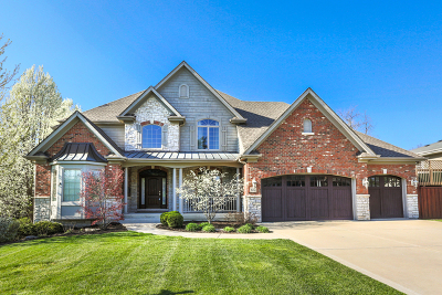Downers Grove Single Family Home For Sale: 608 Sherman Street