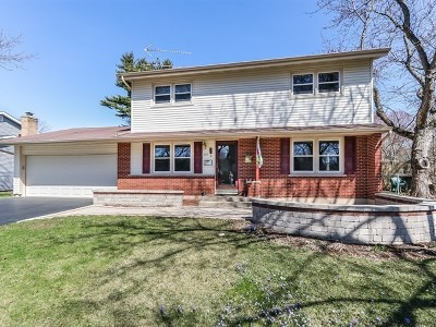 Fox River Grove Single Family Home For Sale: 221 South River Road