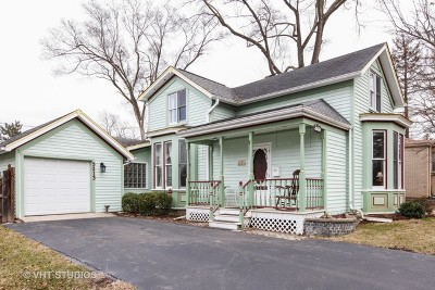Downers Grove Single Family Home For Sale: 5213 Fairview Avenue