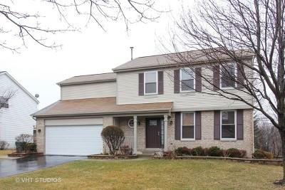 Grayslake Single Family Home For Sale: 758 Alleghany Road