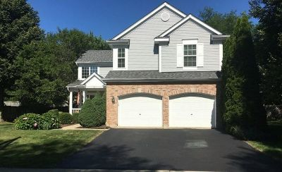 South Elgin Single Family Home For Sale: 29 South London Court