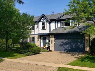 Grayslake Single Family Home For Sale: 377 Clarewood Circle