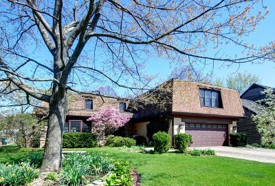 Mount Prospect Single Family Home For Sale: 303 South Lancaster Street