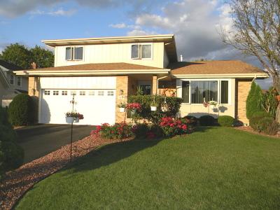 Lemont Single Family Home For Sale: 68 West Logan Street