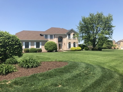 Plainfield Single Family Home For Sale: 17359 South McKenna Drive