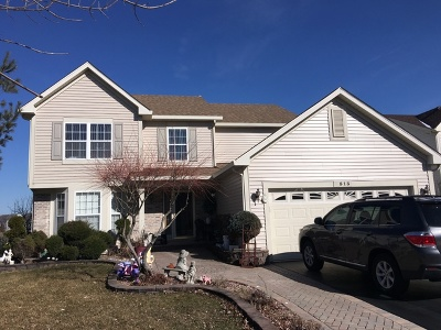 Romeoville Single Family Home For Sale: 513 Susan Street