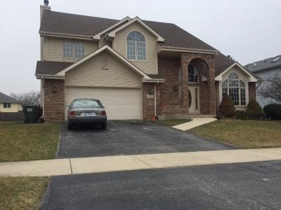 Richton Park Single Family Home For Sale: 22834 Millard Avenue