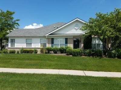 Grayslake Condo/Townhouse For Sale: 180 Enfield Lane