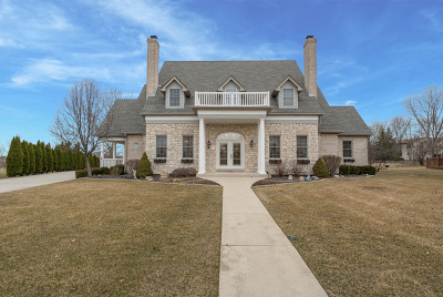 Orland Park Single Family Home For Sale: 12658 Lake View Drive