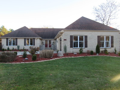 Oak Brook Single Family Home For Sale: 824 Red Stable Way