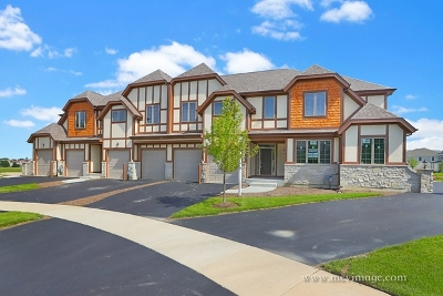 Plainfield Condo/Townhouse For Sale: 12713 Wild Rye Court #C