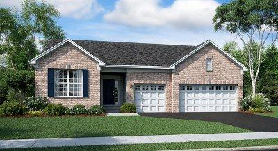 Algonquin Single Family Home For Sale: 2361 Indigo Lane