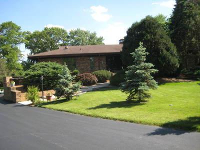 Palos Park Single Family Home For Sale: 14 Fox Lane