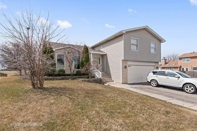 Carol Stream Single Family Home For Sale: 649 Hiawatha Drive