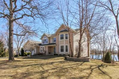 Island Lake Single Family Home For Sale: 519 Tulip Circle