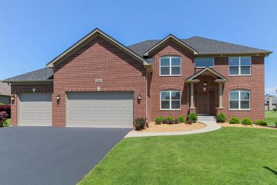 Plainfield Single Family Home For Sale: 25224 Parkside Drive