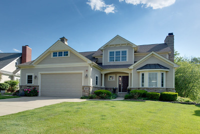 Libertyville Single Family Home For Sale: 227 Cater Lane