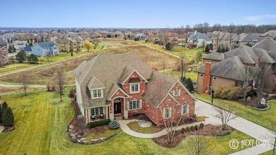Batavia  Single Family Home For Sale: 418 Alberosky Way