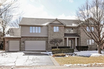 Lake In The Hills Single Family Home For Sale: 3520 Sandstone Court
