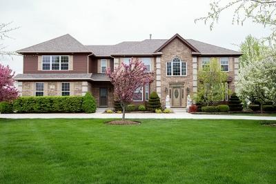 Barrington Hills Single Family Home For Sale: 510 Pond Gate Drive