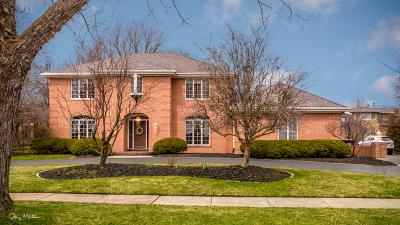 Flossmoor Single Family Home For Sale: 2325 Robertson Lane