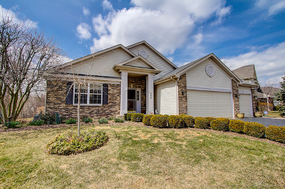 Round Lake Single Family Home For Sale: 688 North Overlook Trail