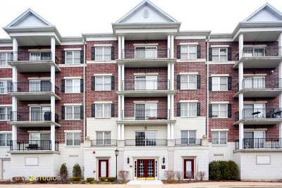 Clarendon Hills Condo/Townhouse For Sale: 434 McDaniels Circle #303