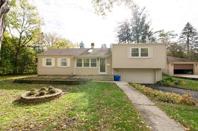 Wheaton Single Family Home For Sale: 813 Sunset Road