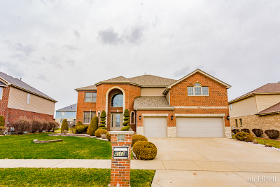 Matteson Single Family Home For Sale: 6112 Old Plank Boulevard