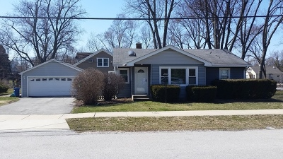 Downers Grove Single Family Home For Sale: 1101 Carol Street