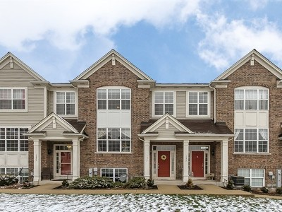 South Elgin Condo/Townhouse Contingent: 1675 Deer Pointe Drive