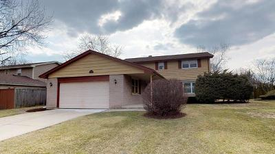 Downers Grove Single Family Home For Sale: 7800 Rohrer Drive