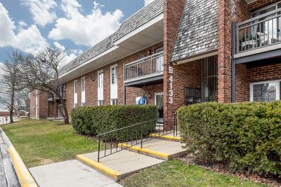 Downers Grove Condo/Townhouse For Sale: 4133 Saratoga Avenue #B-109