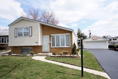 Lombard Single Family Home For Sale: 1013 South Norbury Avenue