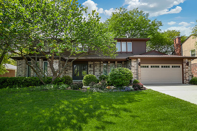 Libertyville Single Family Home For Sale: 1729 Nathan Lane