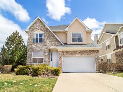 Buffalo Grove Single Family Home New: 421 Raymond Road