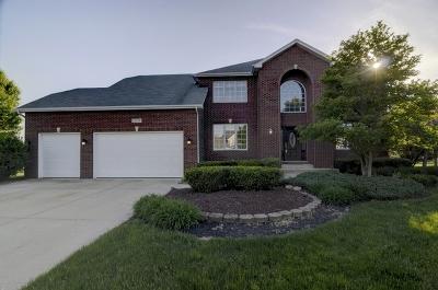 Plainfield Single Family Home For Sale: 13256 Sunderlin Road