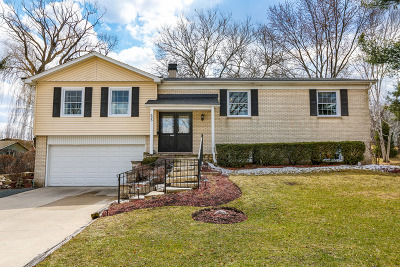 Libertyville Single Family Home For Sale: 635 Downing Road