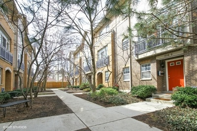 Chicago Condo/Townhouse Contingent: 1816 North Rockwell Street #B