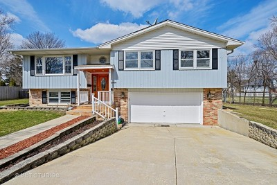 Downers Grove Single Family Home For Sale: 5914 Osage Avenue