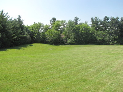 Elburn Residential Lots & Land For Sale: Lot 56 Pine Row Court