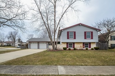 Bloomingdale Single Family Home For Sale: 268 Bedford Lane
