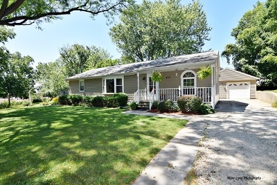 Elburn Single Family Home For Sale: 510 South 1st Street