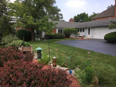 Elmhurst Single Family Home For Sale: 365 East Laurel Avenue
