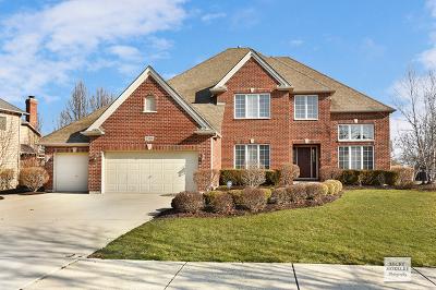 Plainfield Single Family Home For Sale: 25804 Ross Street