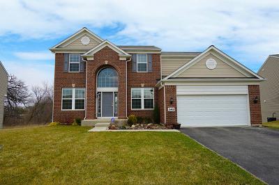 Carpentersville Single Family Home For Sale: 2402 Woodside Drive