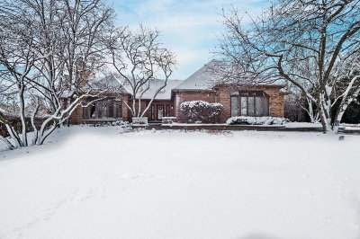 Wheaton Single Family Home For Sale: 502 Robinwood Lane